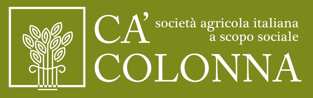 Ca Colonna-Un nuovo sito targato WordPress